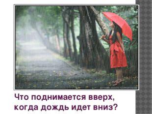 Что поднимается вверх, когда дождь идет вниз?