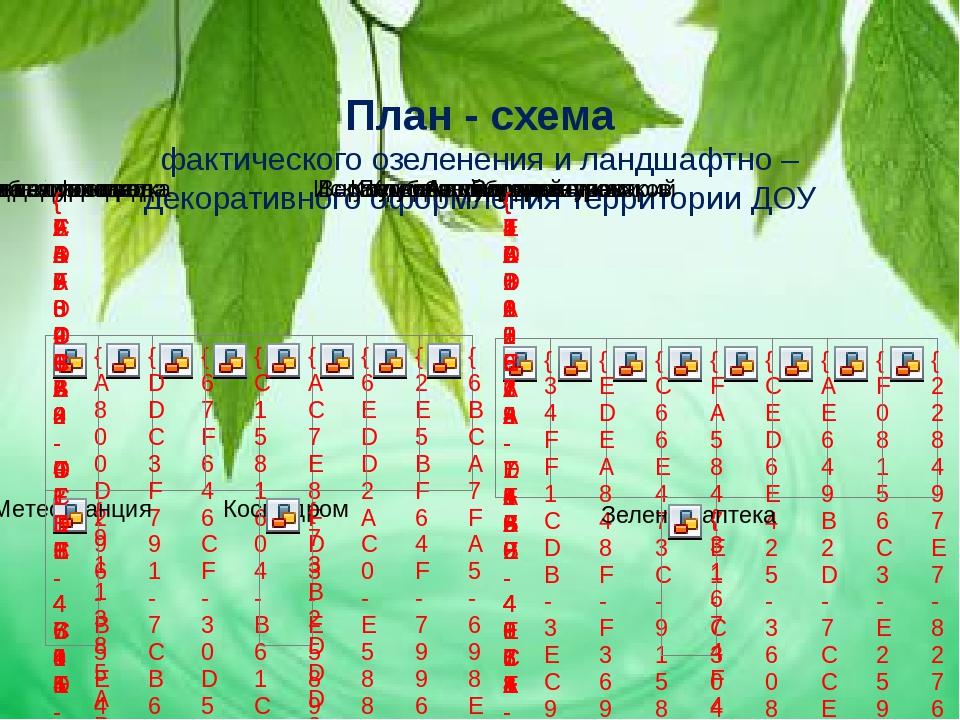 План - схема фактического озеленения и ландшафтно – декоративного оформления...