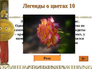 Легенды о цветах 10 Ответ Этот цветок создала богиня Клорис. Однажды она взял
