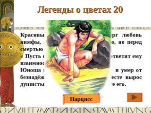 Легенды о цветах 20 Ответ Красивый молодой юноша отверг любовь нимфы, и она п