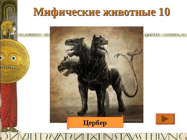 Мифические животные 10 Ответ Страж Аида, Трехголовый пес со змеиным хвостом....
