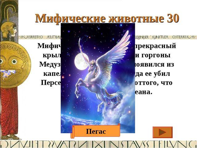 Мифические животные 30 Ответ Мифический белоснежный прекрасный крылатый конь,...