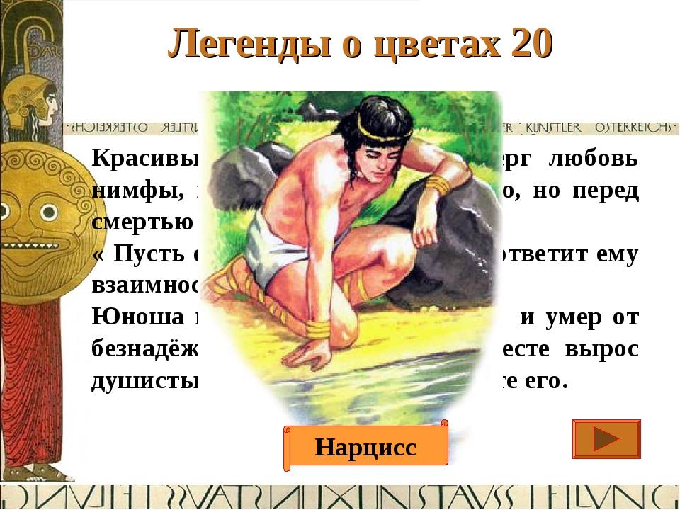 Легенды о цветах 20 Ответ Красивый молодой юноша отверг любовь нимфы, и она п...