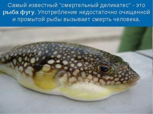 """Самый известный """"смертельный деликатес"""" - это рыба фугу. Употребление недоста"""