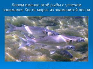 Ловом именно этой рыбы с успехом занимался Костя-моряк из знаменитой песни