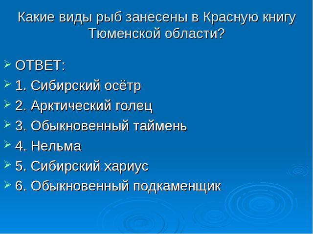 Какие виды рыб занесены в Красную книгу Тюменской области? ОТВЕТ: 1. Сибирски...