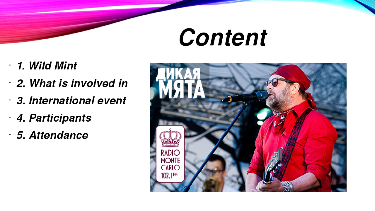 Content 1. Wild Mint 2. What is involved in 3. International event 4. Partici...
