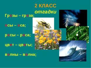 2 КЛАСС отгадки Грозы – гроза; осы – оса; росы – роса; цвет – цветы; волны –