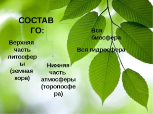 СОСТАВ ГО: Верхняя часть литосферы (земная кора) Нижняя часть атмосферы (тор