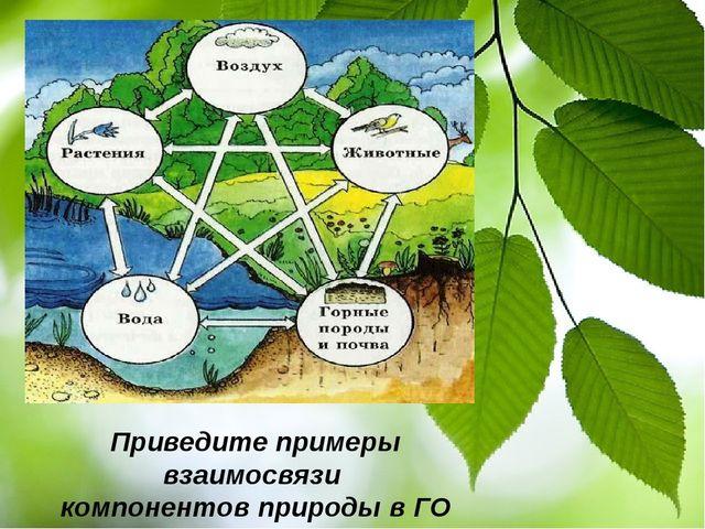 Приведите примеры взаимосвязи компонентов природы в ГО