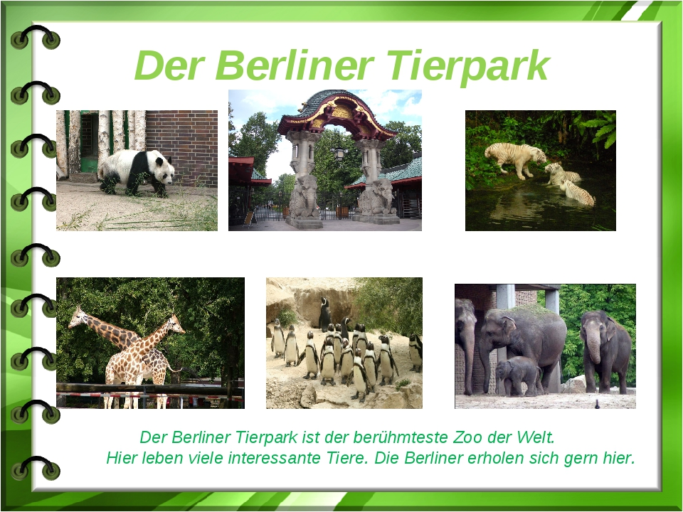 Der Berliner Tierpark Der Berliner Tierpark ist der berühmteste Zoo der Welt....