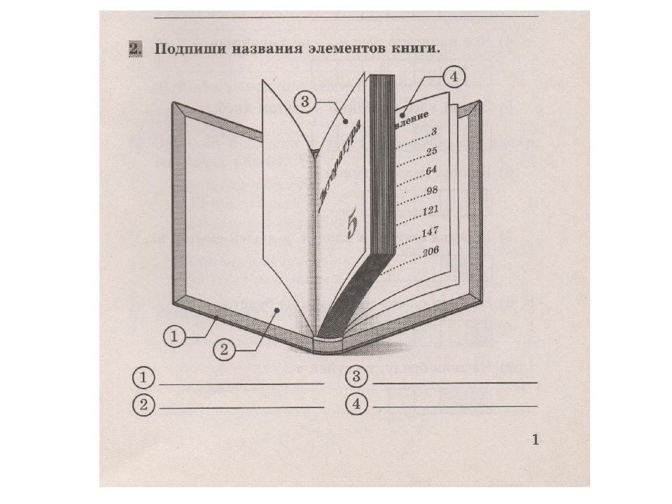 картинка задняя часть книги пятая золотая