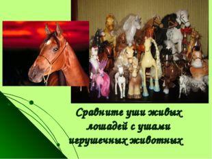 Сравните уши живых лошадей с ушами игрушечных животных