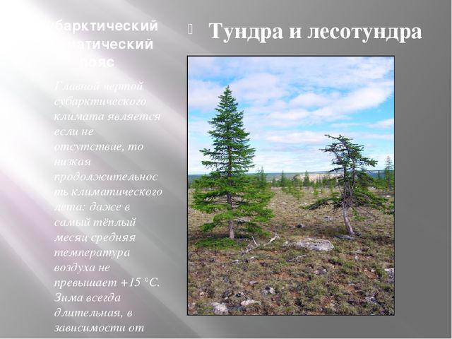 Субарктический климатический пояс Главной чертой субарктического климата явля...