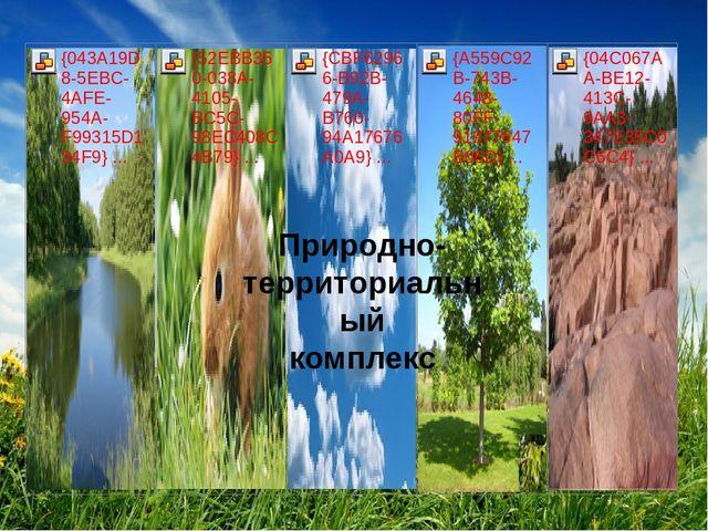 Природно-территориальный комплекс