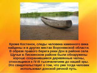 Кроме Костенок, следы человека каменного века найдены и в других местах Ворон