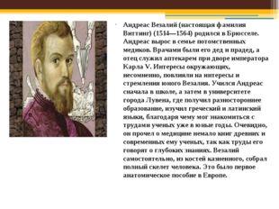 Андреас Везалий (настоящая фамилия Виттинг) (1514—1564) родился в Брюсселе. А