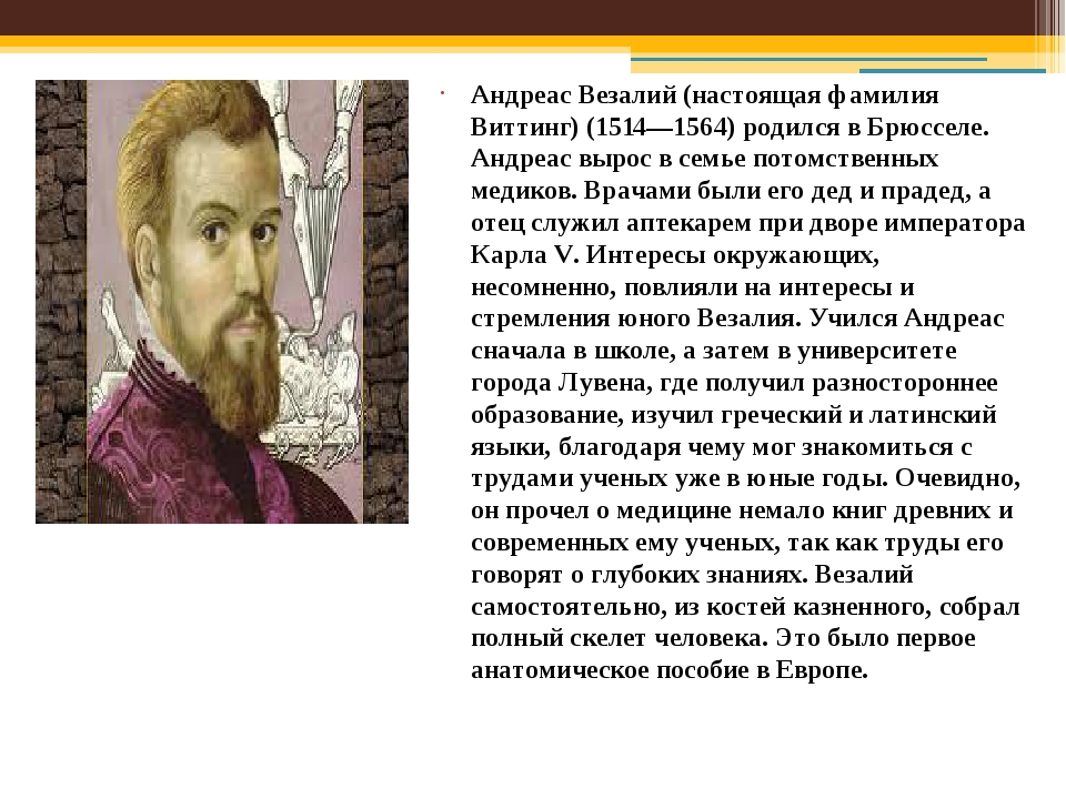 Андреас Везалий (настоящая фамилия Виттинг) (1514—1564) родился в Брюсселе. А...