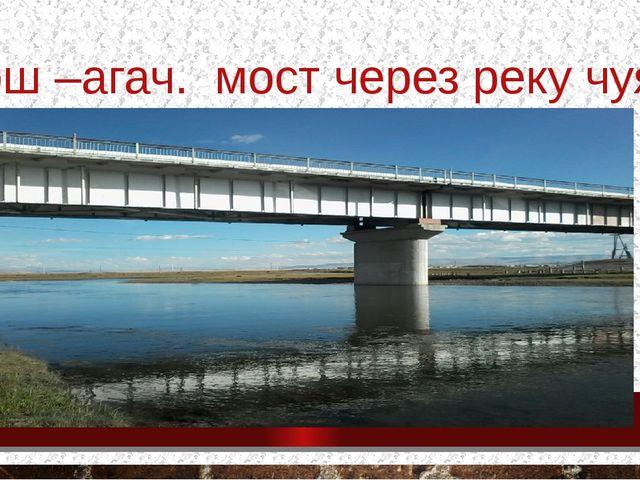 Кош –агач. мост через реку чуя