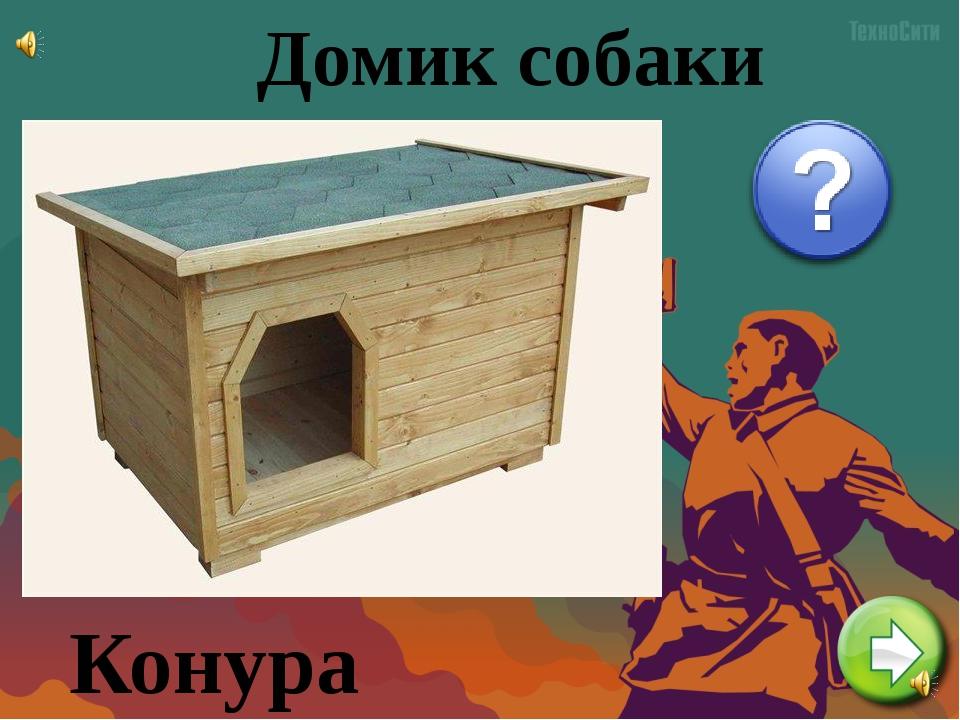 Домик собаки Конура