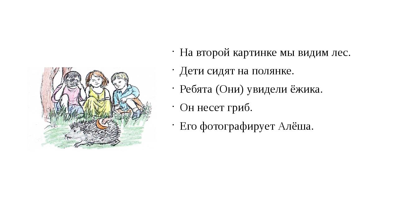На второй картинке мы видим лес. Дети сидят на полянке. Ребята (Они) увидели...