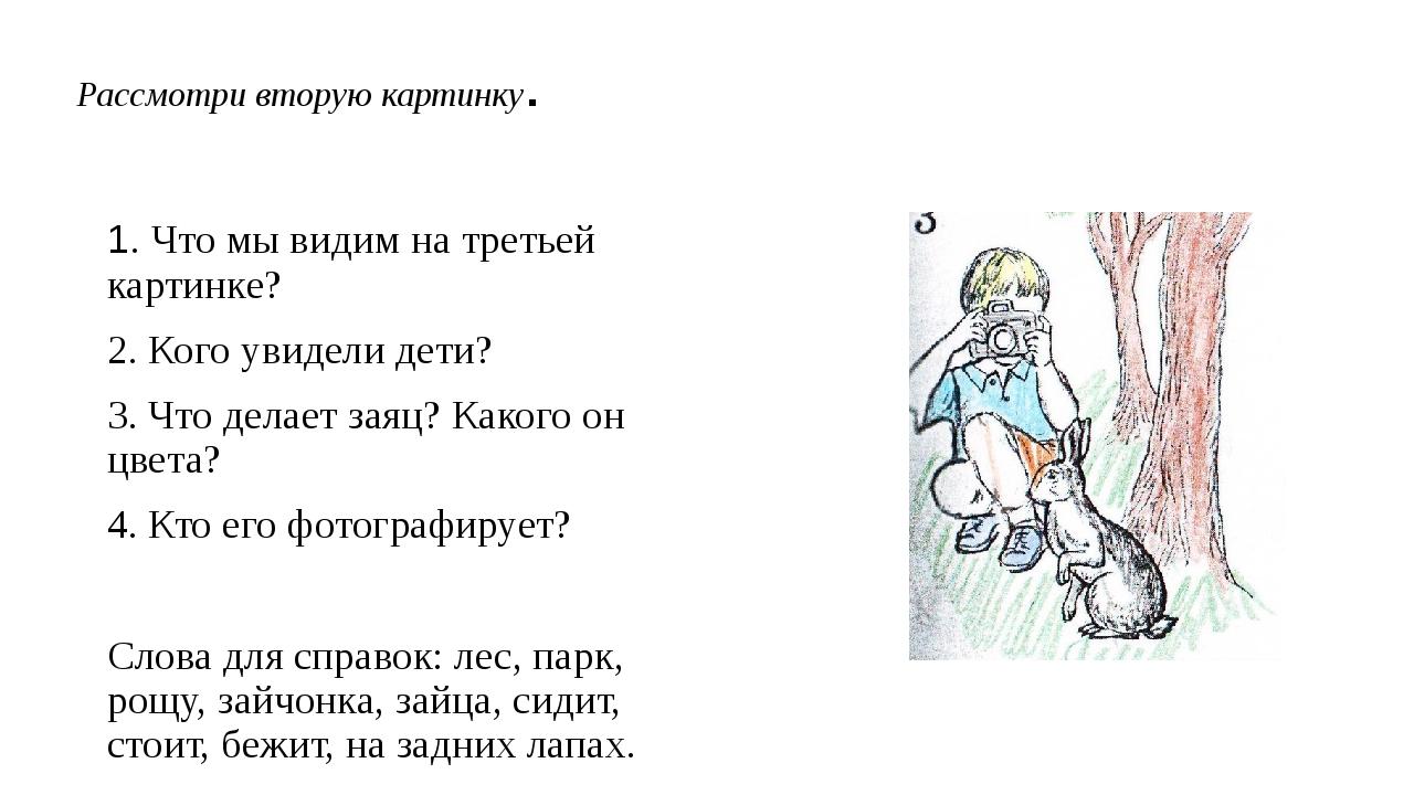 Рассмотри вторую картинку. 1. Что мы видим на третьей картинке? 2. Кого увиде...