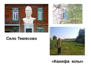 Село Темясово «Канифа юлы»