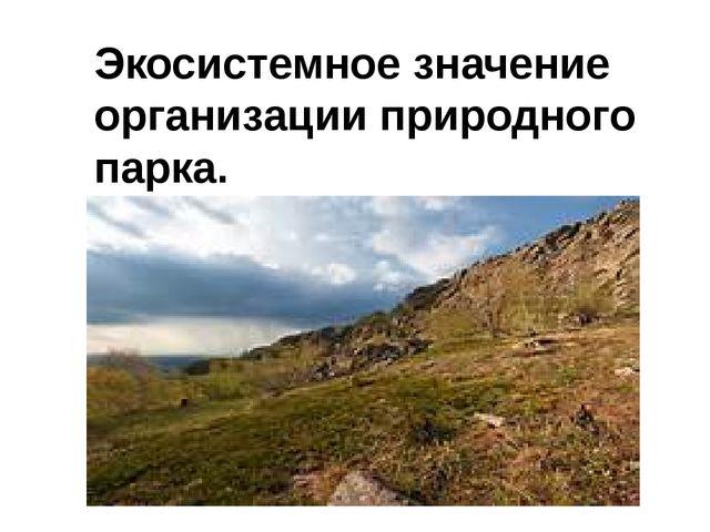 Экосистемное значение организации природного парка.