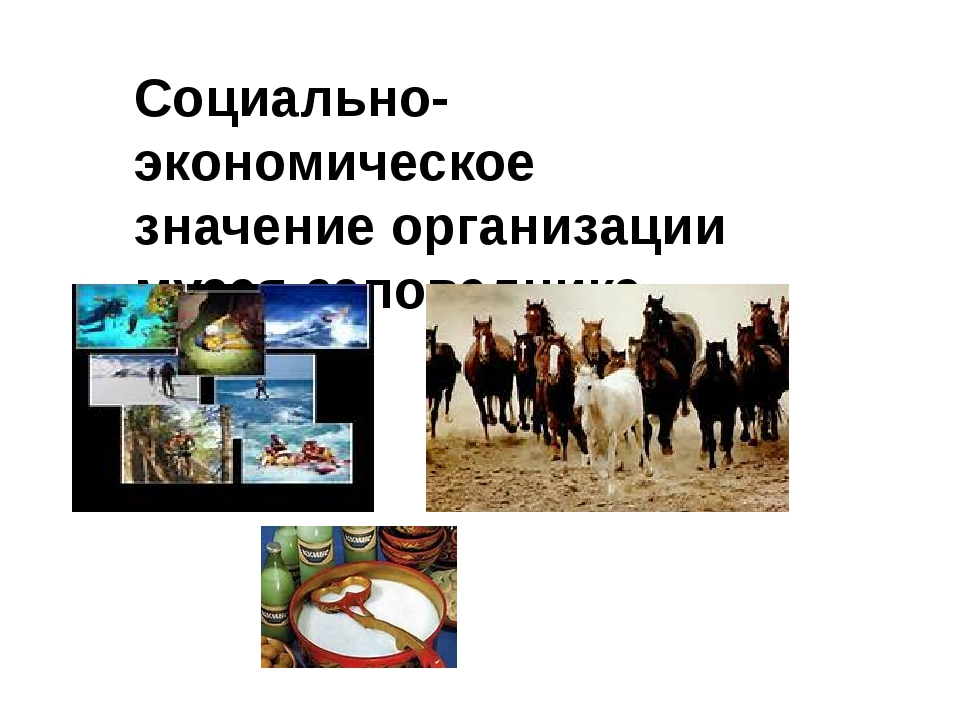 Социально-экономическое значение организации музея-заповедника
