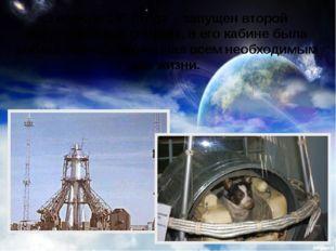 3 ноября 1957 года – запущен второй искусственный спутник, в его кабине была