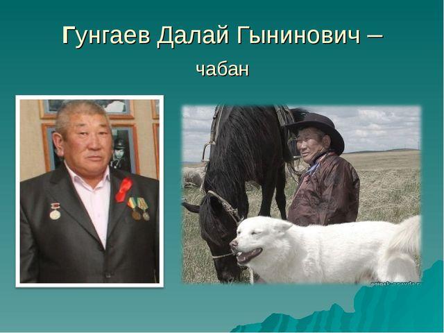 Гунгаев Далай Гынинович – чабан