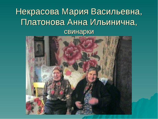 Некрасова Мария Васильевна, Платонова Анна Ильинична, свинарки