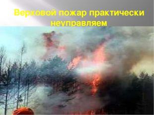 Верховой пожар практически неуправляем
