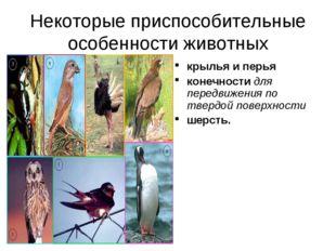 Некоторые приспособительные особенности животных крылья и перья конечности дл