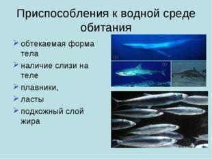 Приспособления к водной среде обитания обтекаемая форма тела наличие слизи на