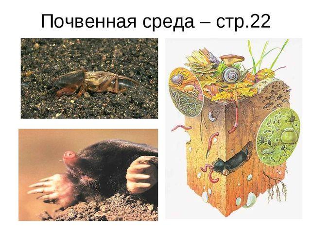 Почвенная среда – стр.22
