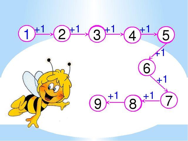2 3 4 5 6 7 8 9 +1 +1 +1 1 +1 +1 +1 +1 +1
