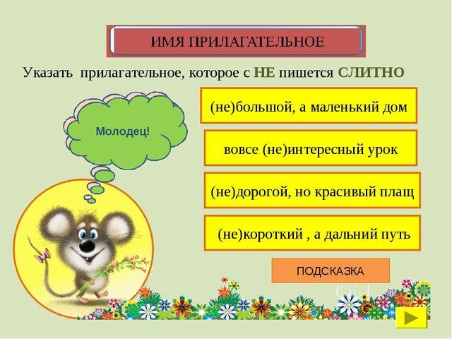 (не)большой, а маленький дом Указать прилагательное, которое с НЕ пишется СЛИ...