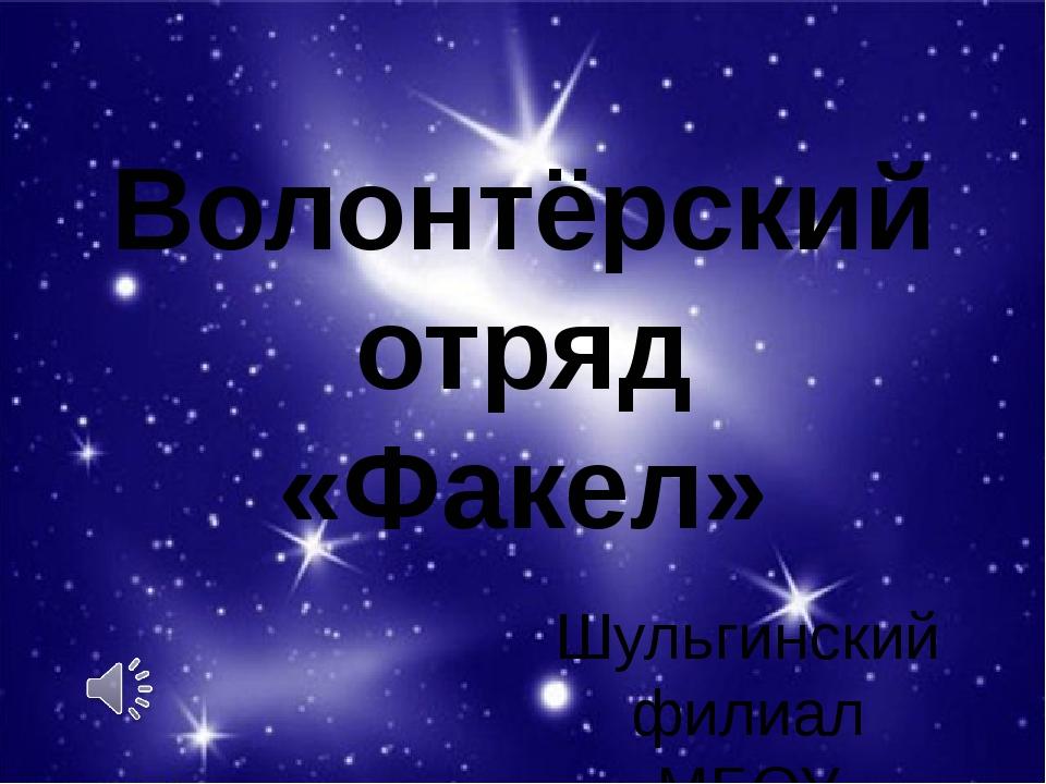 Шульгинский филиал МБОУ «Новопокровская СОШ» Волонтёрский отряд «Факел»