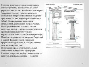 Колонна дорического ордера опиралась непосредственно на стилобат. Ее ствол ук