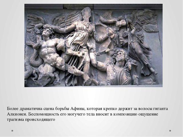 Более драматична сцена борьбы Афины, которая крепко держит за волосы гиганта...