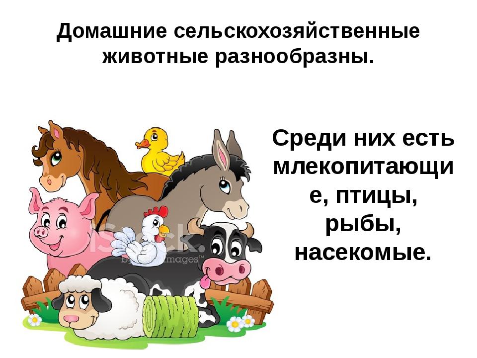 Домашние сельскохозяйственные животные разнообразны. Среди них есть млекопита...