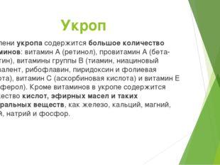 Укроп В зелени укропа содержитсябольшое количество витаминов: витамин А (ре
