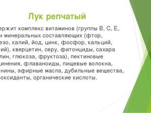 Лук репчатый Содержит комплекс витаминов (группы B, C, E, РР) и минеральных с
