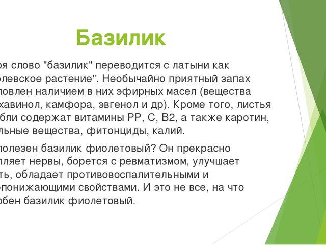 """Базилик Не зря слово """"базилик"""" переводится с латыни как """"королевское растение..."""