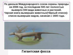 По даннымМеждународного союза охраны природы на 2008 год, за последние 500 л