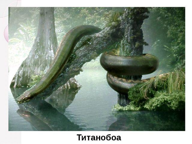 Титанобоа