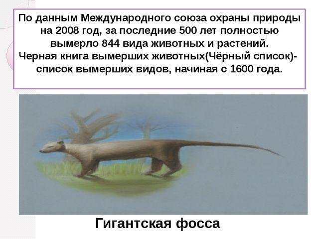 По даннымМеждународного союза охраны природы на 2008 год, за последние 500 л...