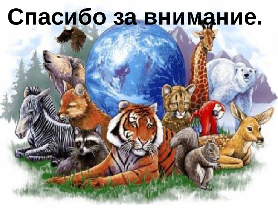 часто картинка охраняемые животные своей мечты
