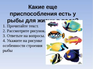 Какие еще приспособления есть у рыбы для жизни в воде? 1. Прочитайте текст. 2